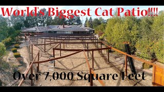 World's Largest Cat Patio (Catio)  Over 7000 Square Feet!
