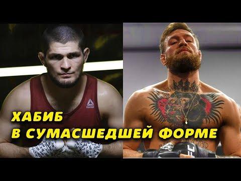 Хабиб и Конор Макгрегор заявили, что готовы к любому бою/UFC и Дана Уайт работают над организацией
