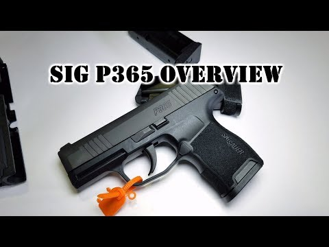 Hands-On With The New SIG SAUER P365 EDC 9mm [VIDEO] - The