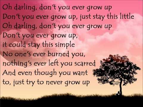 taylor-swift---never-grow-up-lyrics