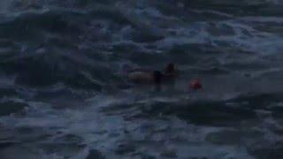 Popular Videos - Ocean Beach