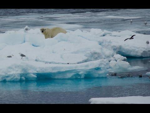 Silver Explorer Arctic Expedition