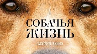 «Собачья жизнь» — фильм в СИНЕМА ПАРК