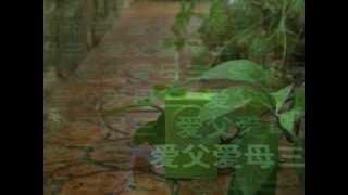 FM3 WuGui