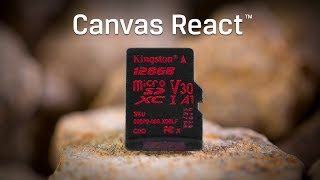 Class 10 microSD Cards - Canvas React - Kingston Technology