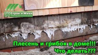 видео Как сделать подвал в доме со свайным фундаментом
