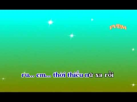 karaoke Lá diêu bông Remix
