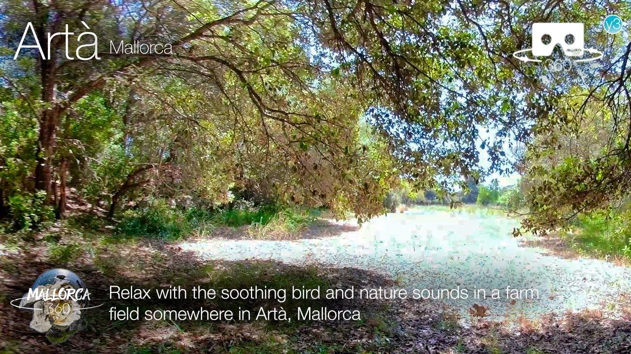 Relax at a farm field in Artà, Mallorca in 360º VR 5K