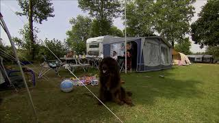 Camping Hohenbusch 2018