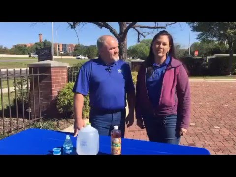 how to get rid of fire ants naturally satx gardenstylesa gardenscope youtube. Black Bedroom Furniture Sets. Home Design Ideas