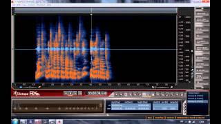 Обработка звука   iZotope RX   Sony Sound Forge