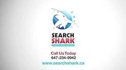 Toronto SEO Firms - 647 234 9942