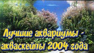 ТОП 27 лучших аквариумов акваскейпов 2004! Конкурс акваскейпа IAPLC 2004! Самые красивые аквариумы!!