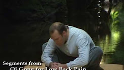 Qi Gong for Low Back Pain with Lee Holden