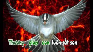 Lạy Ngôi Ba Thiên Chúa (CN CTTHX) - karaoke playback - http://songvui.org