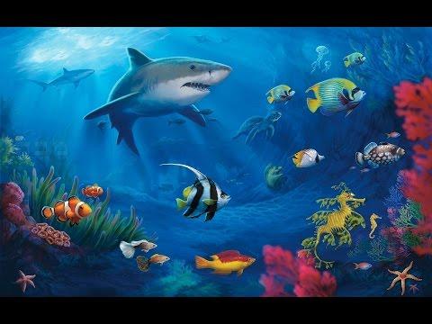 Мультфильм про морское дно