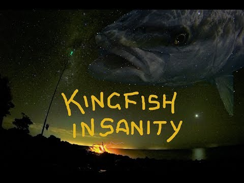 NZ Kingfish INSANITY