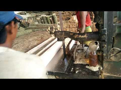 Proses kayu sengon diameter 46