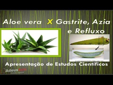 Aloe vera gastritis ulcera