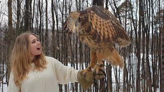Фото с совой. Как это происходит