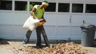 poulan Leaf vacuum  in action