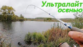 Ловля окуня СРЕДИ ЗЛЫХ ЩУК Рыбалка на спиннинг ультралайт осенью в 2021