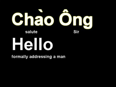 Vietnamese Lesson 1 (southern Accent)