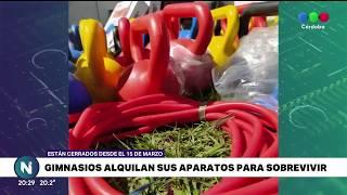 LOS GIMNASIOS ALQUILAN ELEMENTOS PARA SOBREVIVIR