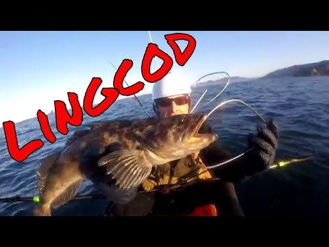 Ocean Kayak Frenzy: Fishing For Lingcod And Rockfish