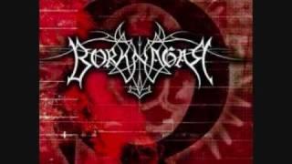 Borknagar - The Presence Is Ominous