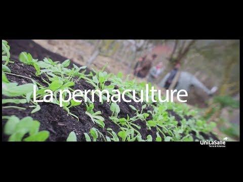 [DOCU] La permaculture par le Bec Hellouin