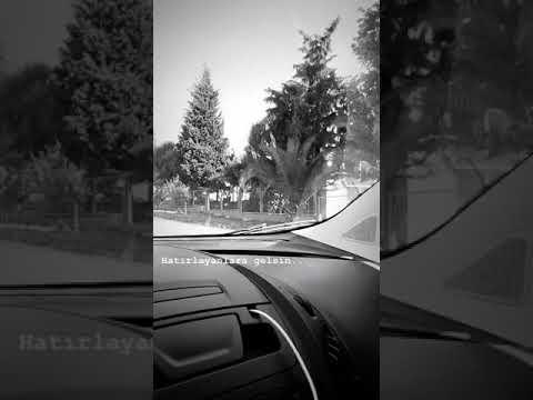 Arabada Kısa Müzikli Videolar #1