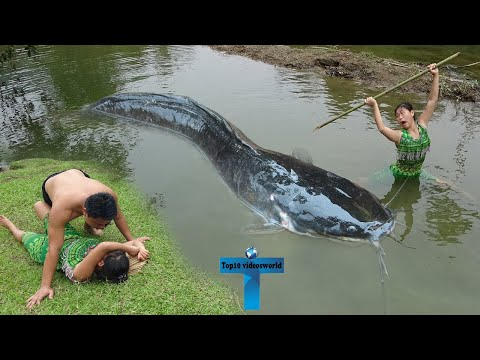 Top 10 Amazing And Weird Fishing Moments Caught On Camera
