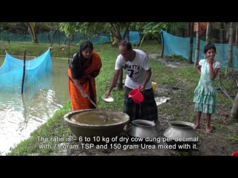 FtF Documentary from Barisal
