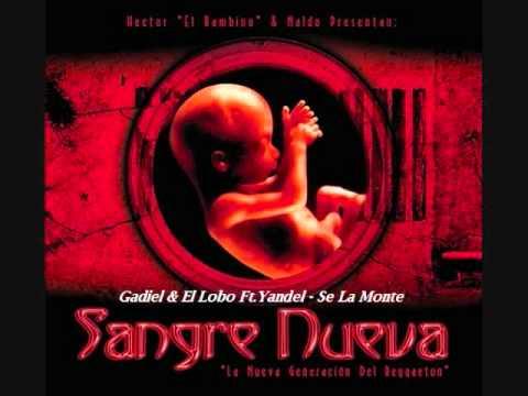 05.Gadiel & El Lobo Ft.Yandel - Se La Monte (Sangre Nueva)