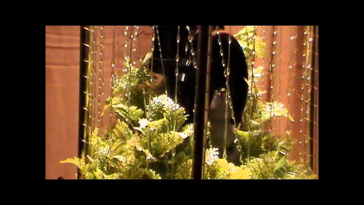 Rain Lamp Grist Mill Creators Inc Youtube