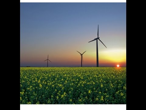 Renewable Energy Progress –Despite Resistance from the Fossil Fuel Industry