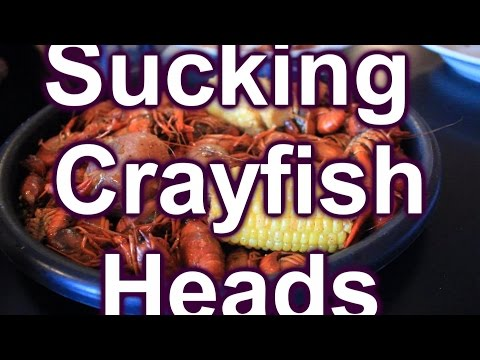Sucking Heads & Eating Tails A Crayfish Journey ~ Review ~ Yummy!