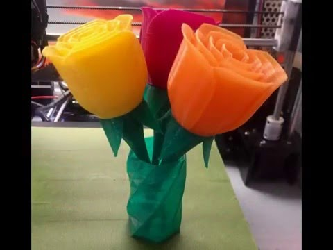 3D Printed Flowers - Time Lapse