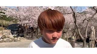 [열한번째 도시락, 봄꽃 창작 축제!] 본 받아라 조 …