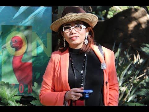 Tạ Phong Tần – Sở Khỉ Mini Ở Santa Ana, Cali