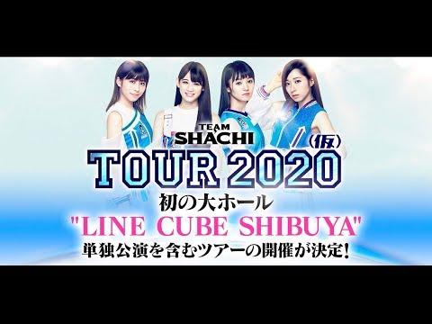 【来年2月〜4月の告知】TEAM SHACHI(シャチ)TOUR 2020オフィシャル先行受付中