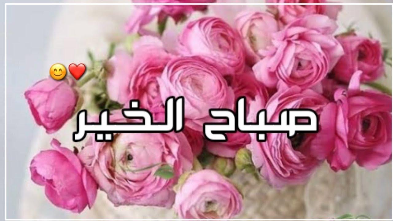 صباح الورد و الياسمين لكل من هم على قلوبنا غاليين❤ - أجمل حالات واتساب صباحية 🌷- دعاء الصباح 💕