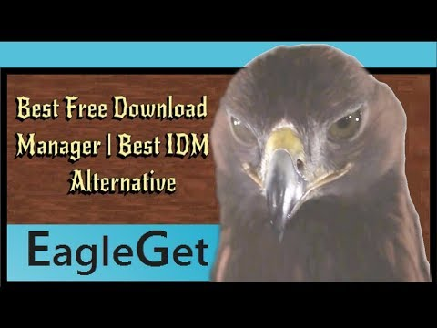 EagleGet | The Best Free Alternative to IDM | Best Downloader | TechMaster BD1