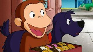 Jorge el Curioso en Español | Ceros para las Rosquillas | Dibujos animados para niños