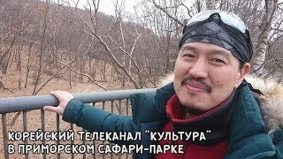 "КОРЕЙСКИЙ ТЕЛЕКАНАЛ ""КУЛЬТУРА"" В ПРИМОРСКОМ САФАРИ ПАРКЕ"