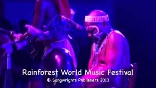 Dizu Plaatjies and Ibuyambo - Rainforest World Music Festival 2013