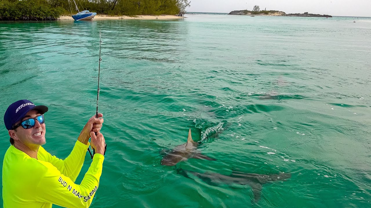 SHARK ISLAND!!! Exploring Cat Island, Bahamas. Day 2