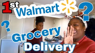 Our First Walmart Grocery Delivery Review | Would we recommend it?