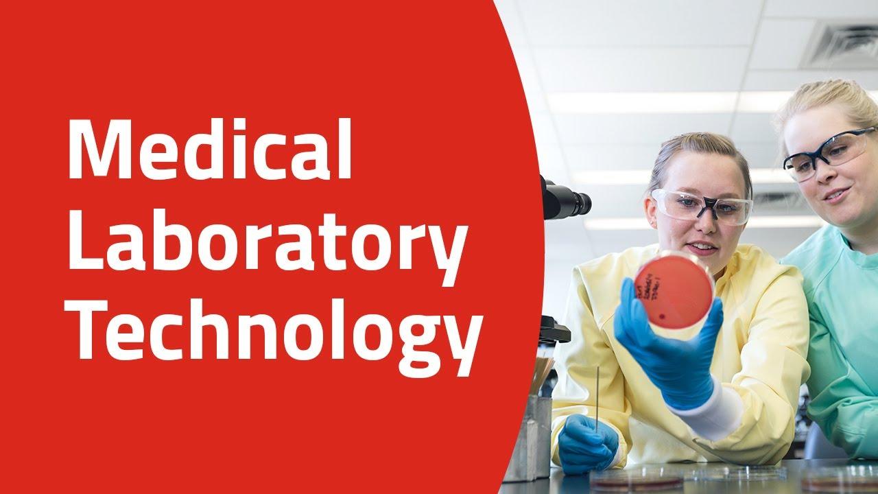 Medical Laboratory Technology   SAIT, Calgary, Alberta